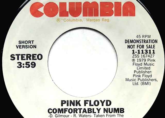 comfortably numb, pink floyd,the wall, single,run like hell,roger waters, david gilmour, promo