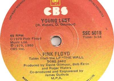 young lust, pink floyd, the wall, extended