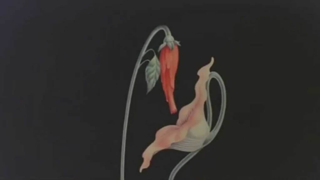 what shall we do now, empty spaces, the wall, pink floyd,gerald scarfe