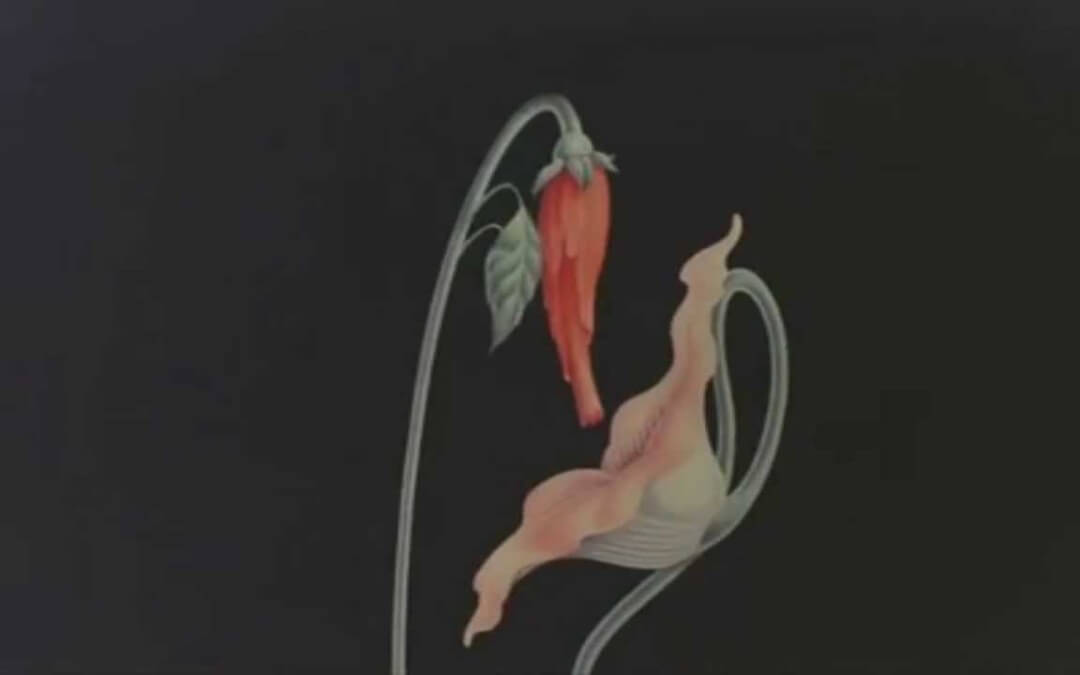 what shall we do now, empty spaces, the wall, pink floyd,gerald scarfe,pink floyd the wall movie